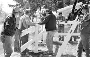 st matthews fence